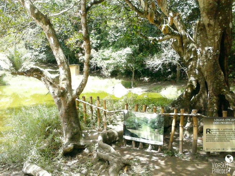 Lagoa sagrada dos negros - Parque Memorial Quilombo dos Palmares