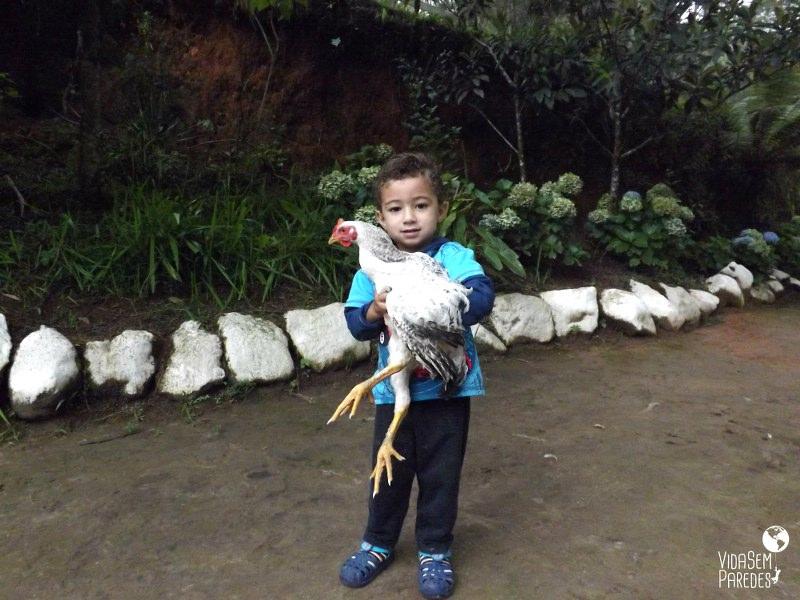 Vida sem Paredes - Serra da Bocaina (6)