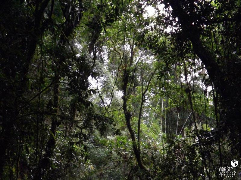 Parque Nacional da Serra da Bocain