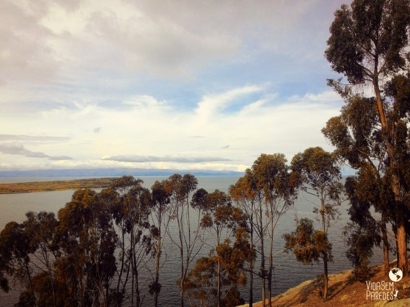 Vida sem Paredes - Titicaca e Isla del Sol (9)