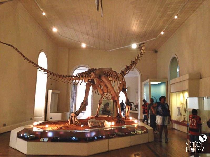 Vida sem Paredes - esqueletos de dinossauro do Museu Histórico Nacional no Rio de Janeiro