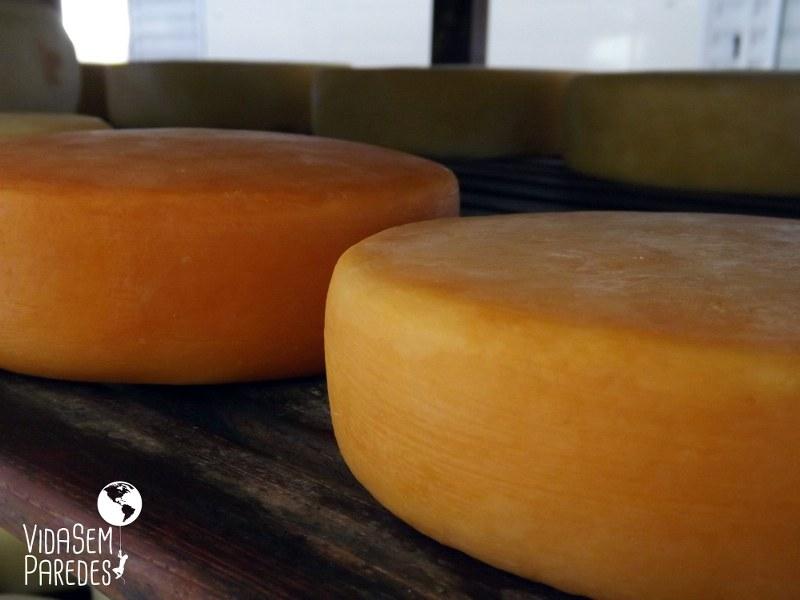 6 motivos para visitar as fazendas de queijo Canastra