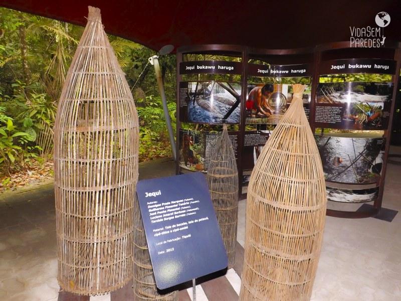 Dicas de passeios e atrações em Manaus: MUSA