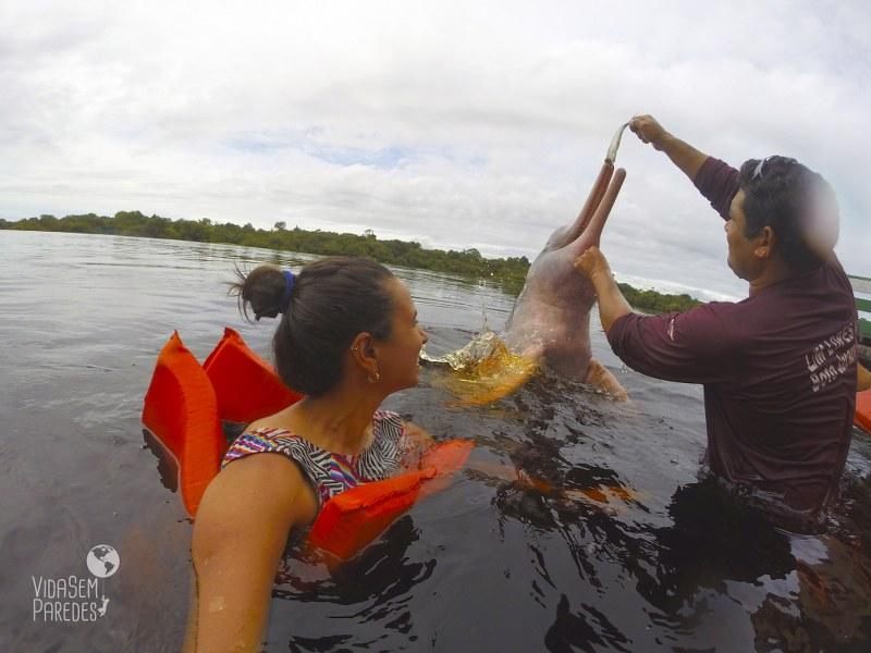 Dicas de passeios e atrações em Manaus: botos
