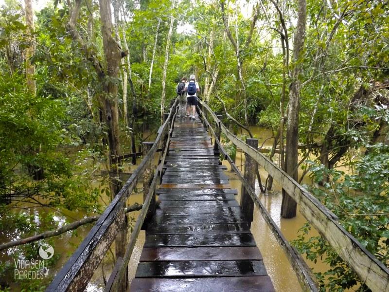 Dicas de passeios e atrações em Manaus: Reserva Janauari