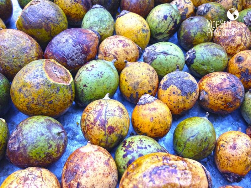 Pratos típicos do Amazonas