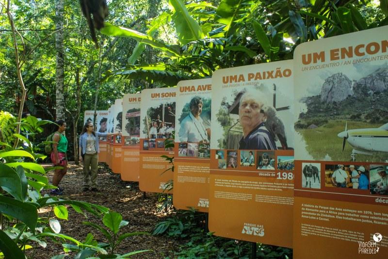 Parque das Aves de Foz do Iguaçu - Paraná