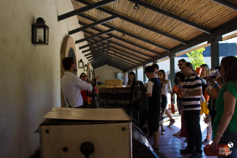 Tour na Viña Concha Y Toro, Santiago - Chile