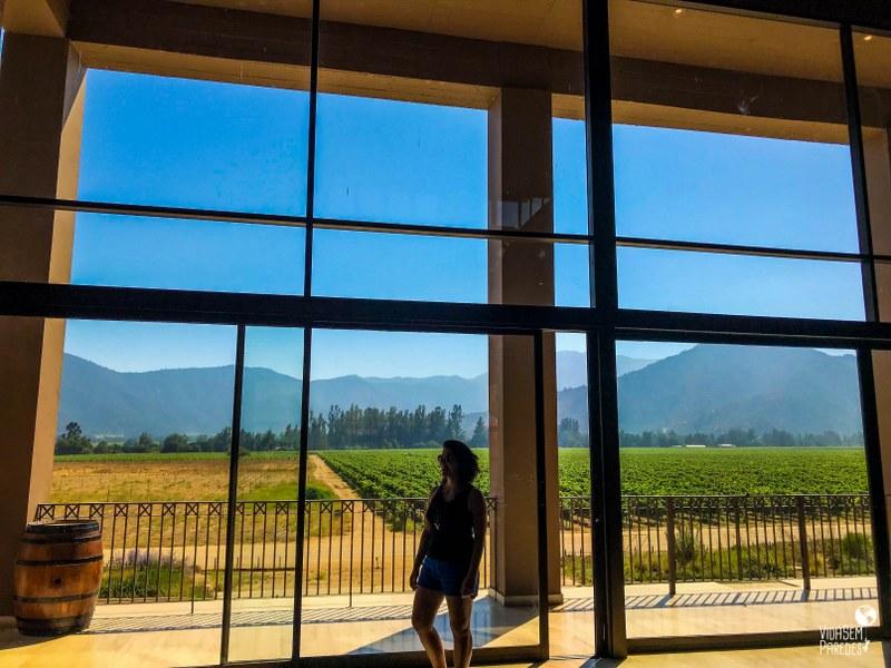Rota do Vinho no Chile: tour no Valle de Casablanca - Viña Veramonte