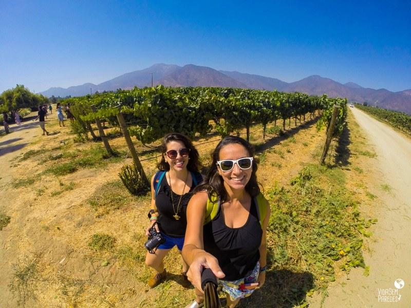 Rota do Vinho no Chile: tour no Valle de Casablanca