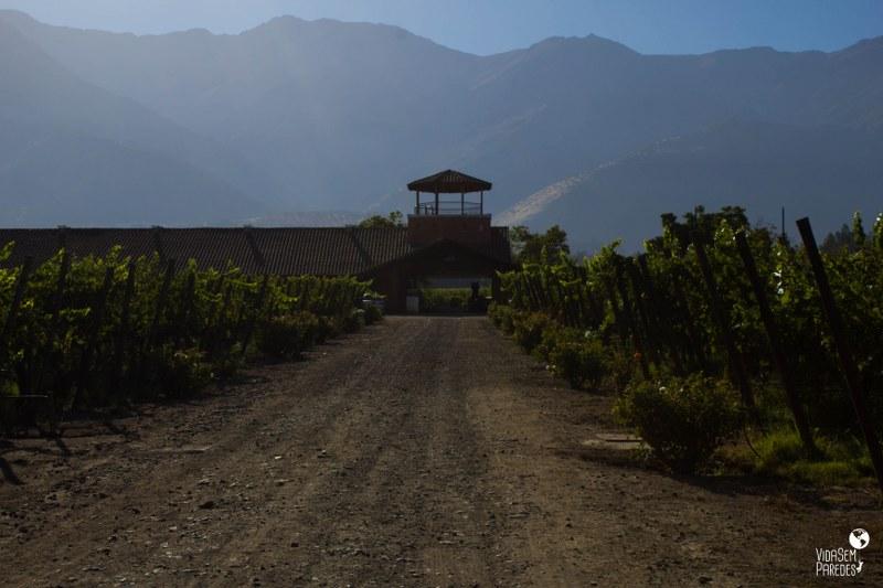 Melhores vinícolas no Valle del Maipo no Chile: Santa Rita