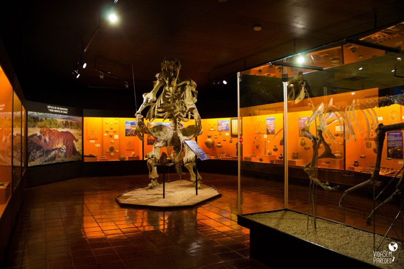 Museo Colchagua - Santa Cruz, Chile