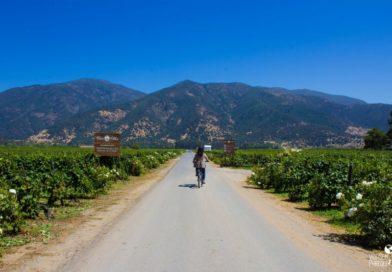 Visitando a vinícola Casa Silva, Valle de Colchagua, Chile