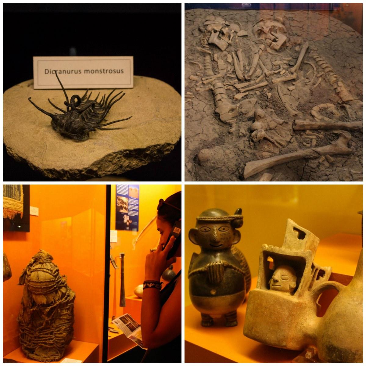 O que fazer em Santa Cruz, no Valle de Colchagua (Chile): Museu do Colchagua