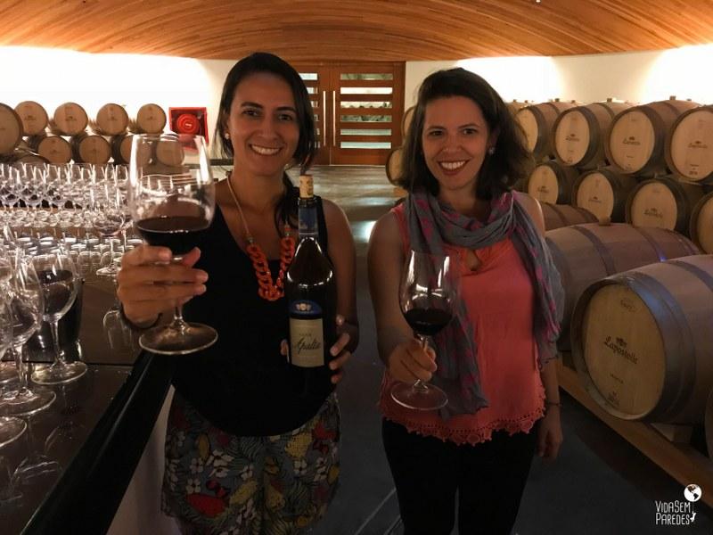 O que fazer em Santa Cruz, no Valle de Colchagua (Chile): Viña Lapostolle