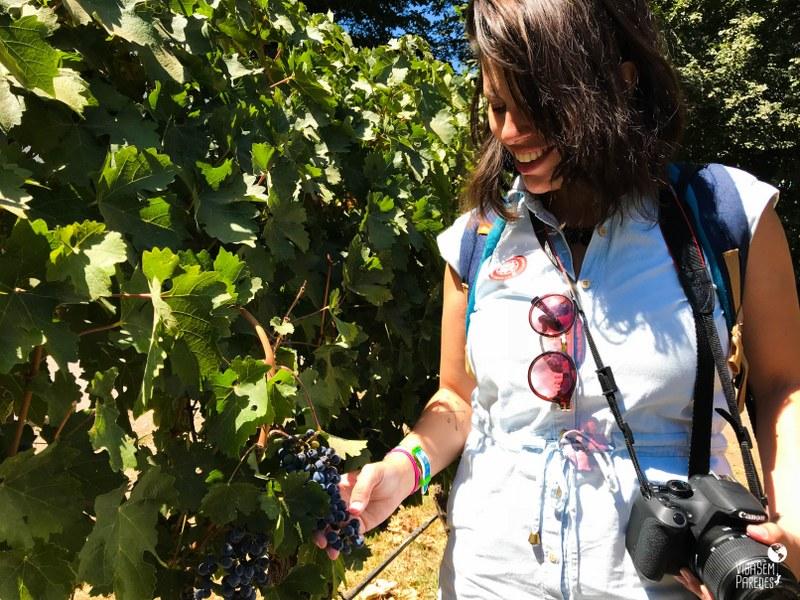 Melhores vinícolas no Valle del Maipo no Chile: Undurraga