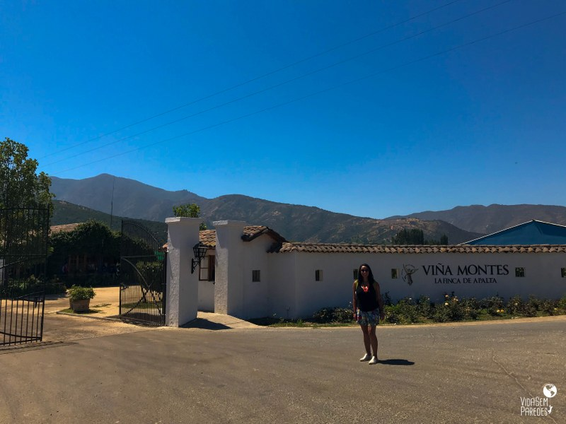 Vinícolas no Valle de Colchagua, Chile: Viña Montes