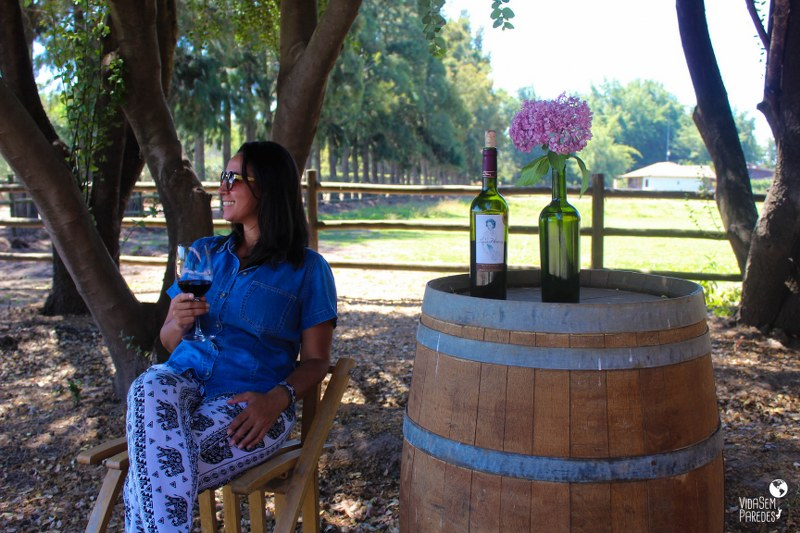 vinícolas no Vale do Colchagua, no Chile: Viña Laura Hartwing