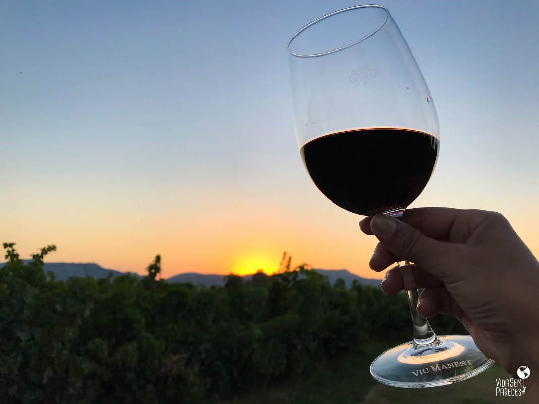 vinícolas no Vale do Colchagua, no Chile: Viña Viu Manent