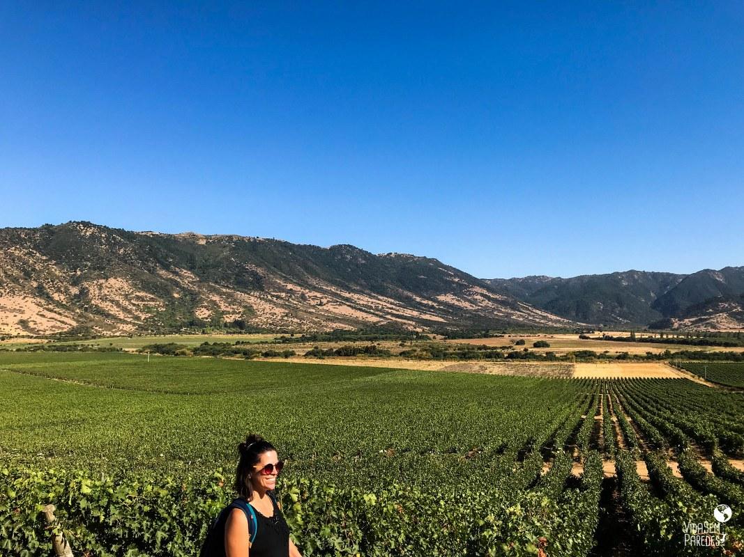 vinícolas no Vale do Colchagua, no Chile