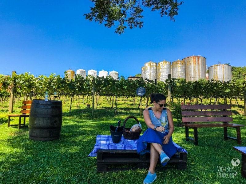 vale dos vinhedos vinicolas
