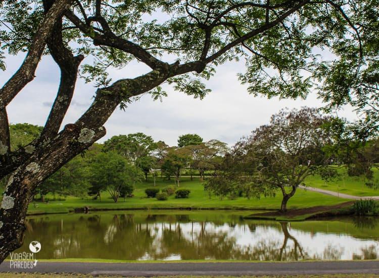 o que fazer no Jardim Botanico Curitiba